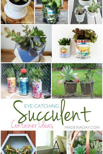Eye-Catching Succulent Container Ideas