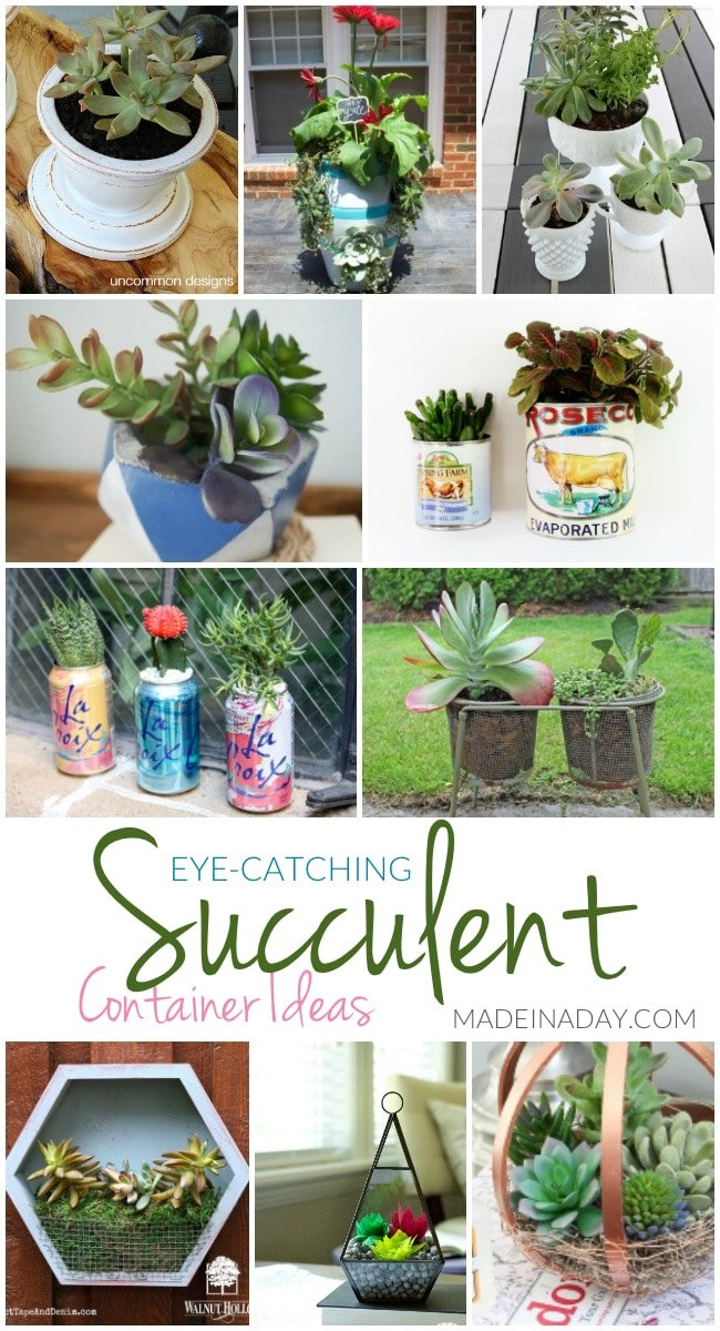 Eye-Catching Succulent Container Ideas,10 fun DIY ways to display succulents this summer! Colorblock cement, magnet containers, soda can container, milk glass, embroidery hoop orb, hexagon, faux succulent terrarium