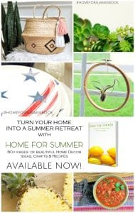 Home for Summer Ebook Launch! 1