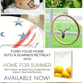 Home for Summer Ebook Launch! 31