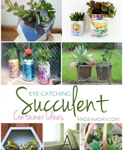 Eye-Catching Succulent Container Ideas 31
