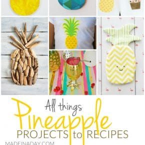 All Things Pineapple Projects to Recipes 1