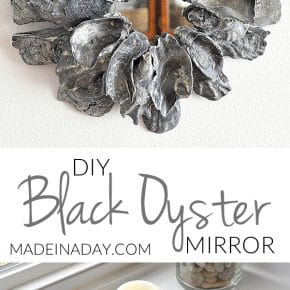 How to Make a Black Oyster Shell Mirror 1