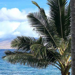 Summer Vacation in Maui Hawaii 1