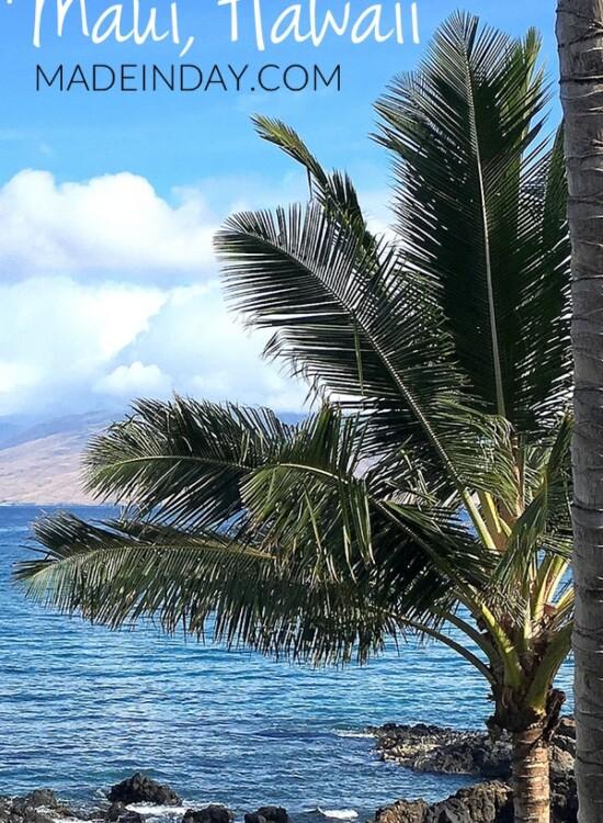 Summer Vacation in Maui Hawaii 4