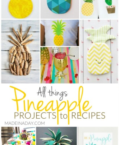 All Things Pineapple Projects to Recipes 37