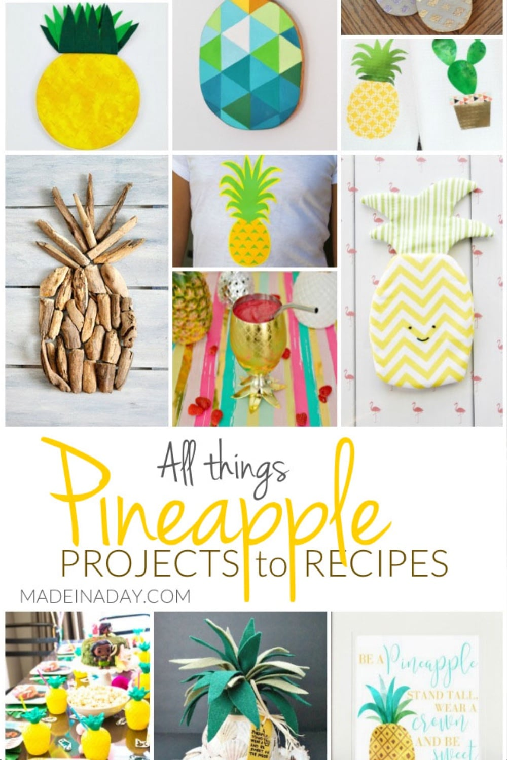 All Things Pineapple Projects to Recipes