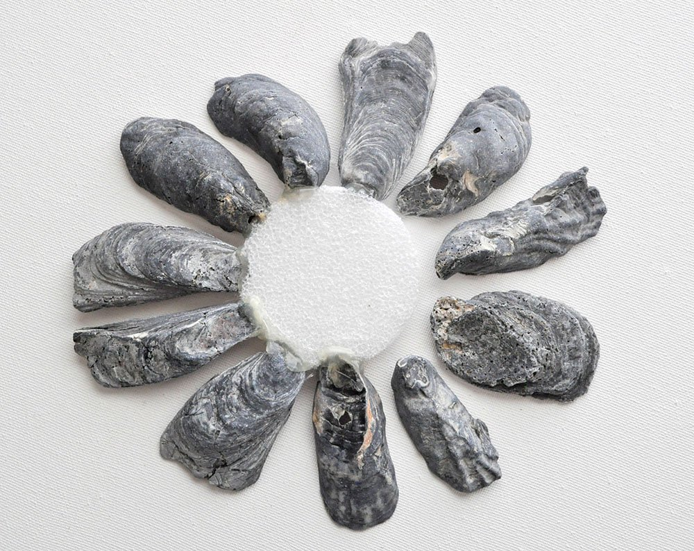 How to Make a Black Oyster Shell Mirror 6