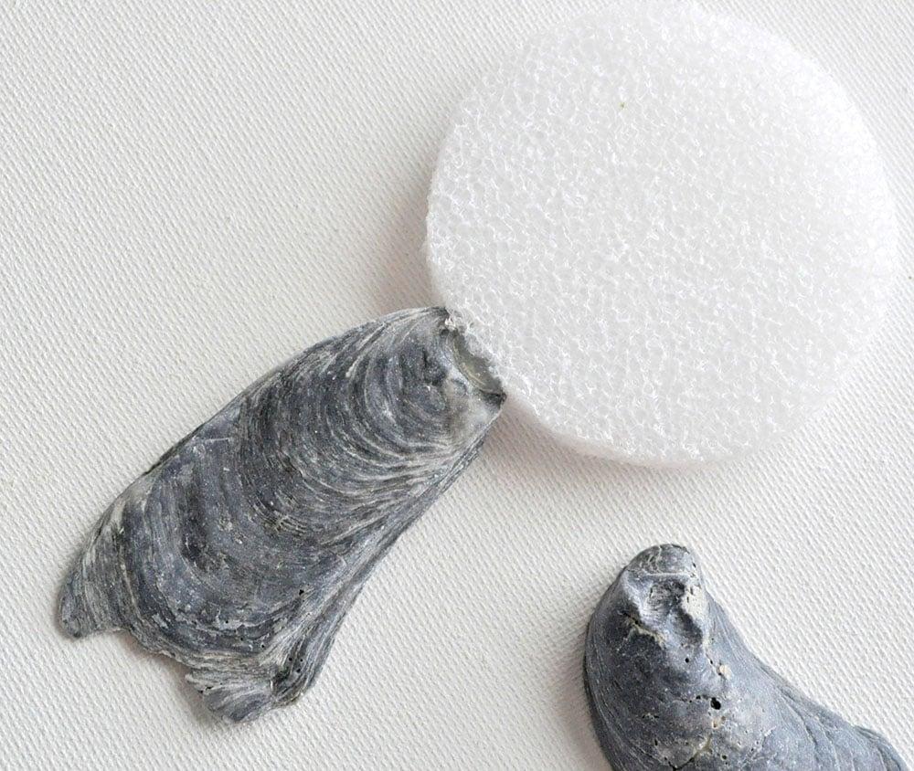 glue seashells to o mirror