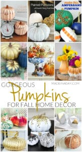 Gorgeous Pumpkin Crafts for Fall Home Decor 1