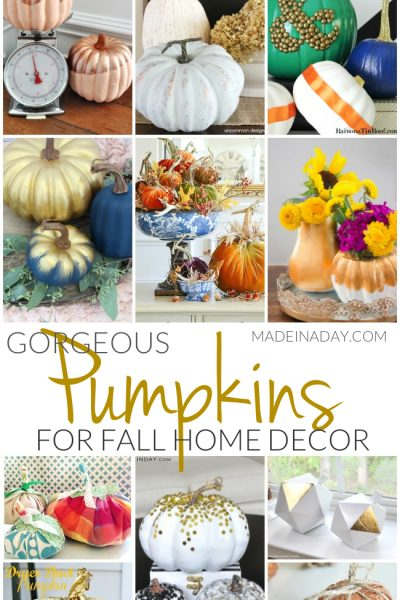 Gorgeous Pumpkin Crafts for Fall Home Decor