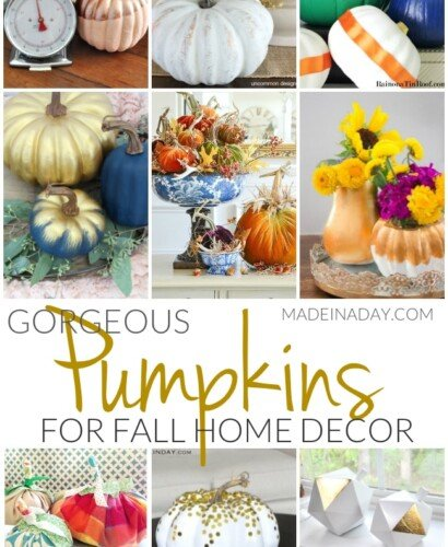 Gorgeous Pumpkin Crafts for Fall Home Decor 9
