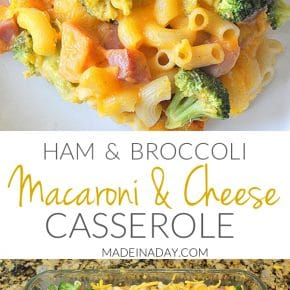 Broccoli Ham Macaroni and Cheese Casserole 1