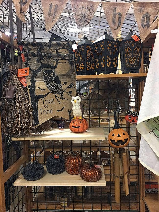 Halloween Pumpkins and banners