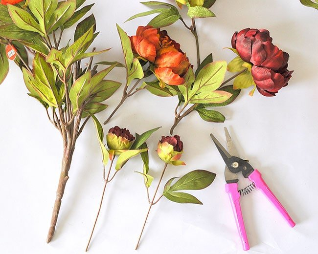 Cut floral stems