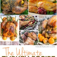 Ultimate Turkey Recipe Collection