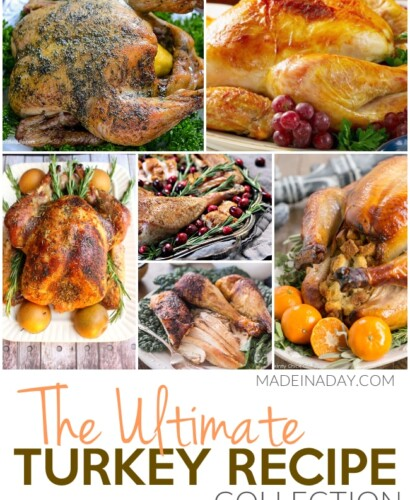 Ultimate Thanksgiving Turkey Recipe Collection 33
