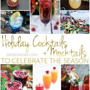 Cocktail Recipes 31