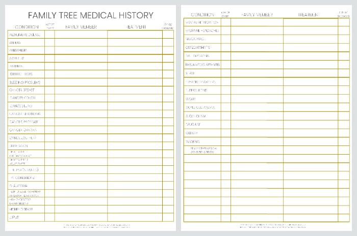 Be Prepared: Doctor Office Visit Medical Records Bundle 3