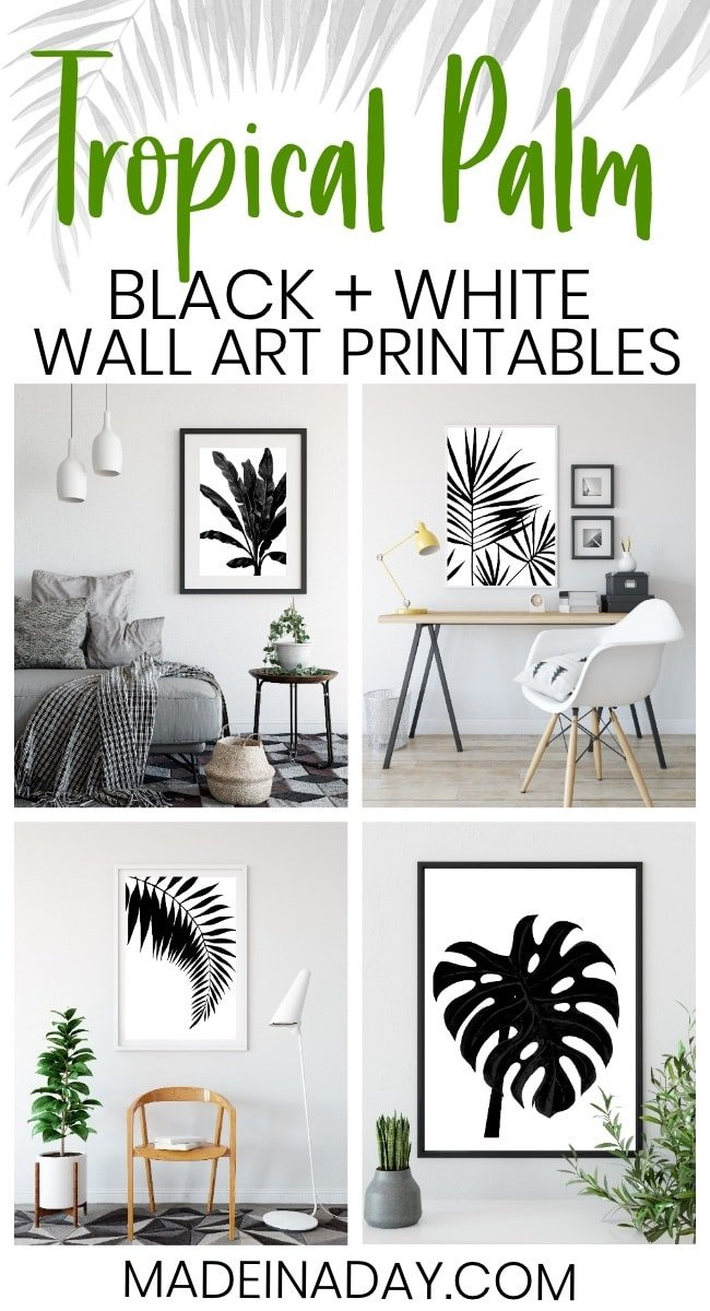 black Palm art prints