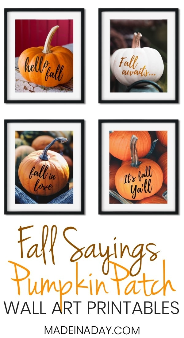 Popular Fall Sayings Pumpkin Wall Art Printables! Just print & hang! fall wall art, fall pumpkin wall art, fall sayings wall art, fall quotes wall art, white pumpkin wall art, It's Fall Y'all, Fall Awaits, hello fall, fall in love, #fallinlove #fall #hellofall #itsfallyall #wallart #printable #pumpkin #pumpkinwallart #falldecor #gallerywall #fallquotes