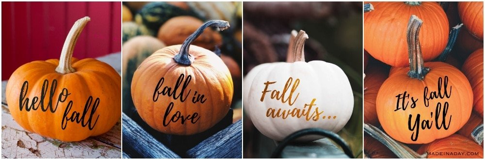 Four Fall Pumpkin Sayings, Hello Fall, It's Fall Y'all, Fall in Love, Fall Awaits