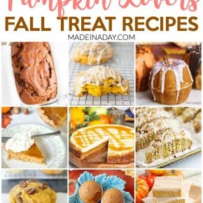 Pumpkin Lovers Fall Treat Recipe Collection 1