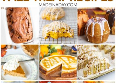 Pumpkin Lovers Fall Treat Recipe Collection 16