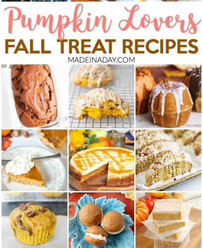 Pumpkin Lovers Fall Treat Recipe Collection 4