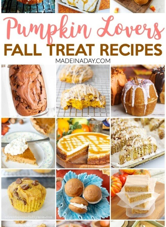 Pumpkin Lovers Fall Treat Recipe Collection 8