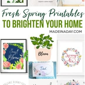 Spring Printables to Freshen up Your Home 6