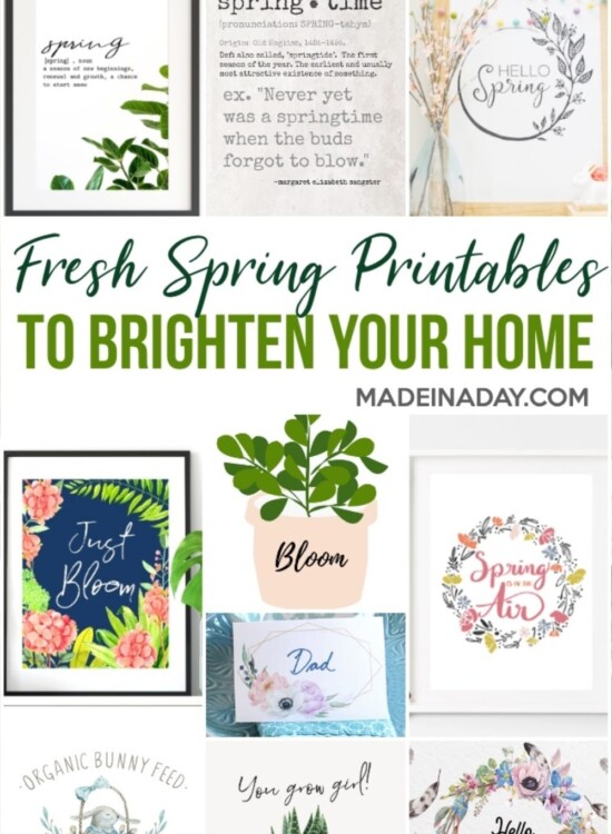 Spring Printables to Freshen up Your Home 5