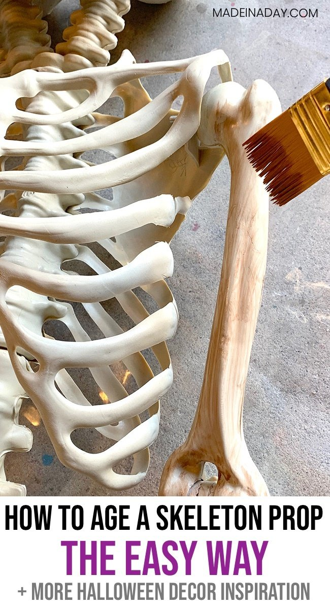 how to corpse a skeleton, how to paint a Halloween Skelton prop, How to age a skeleton