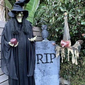 Mesmerizing Two Headed Skeleton Halloween Decor 6
