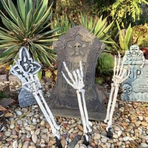 Mesmerizing Two Headed Skeleton Halloween Decor 4