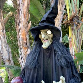 Mesmerizing Two Headed Skeleton Halloween Decor 3