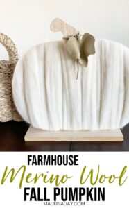 Cozy Merino Wool Pumpkin 1