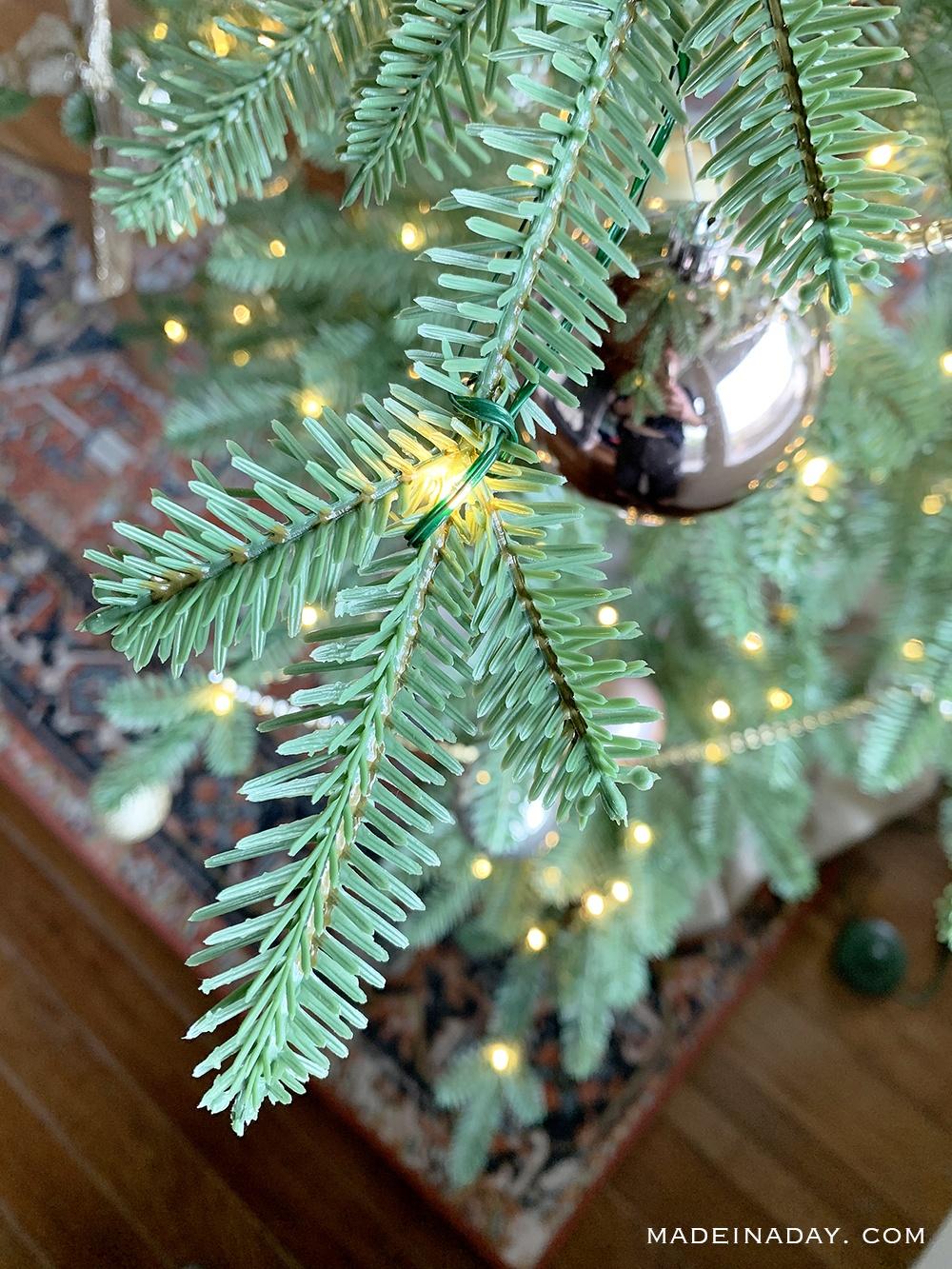 Alpine Balsam Fir Sparse branches