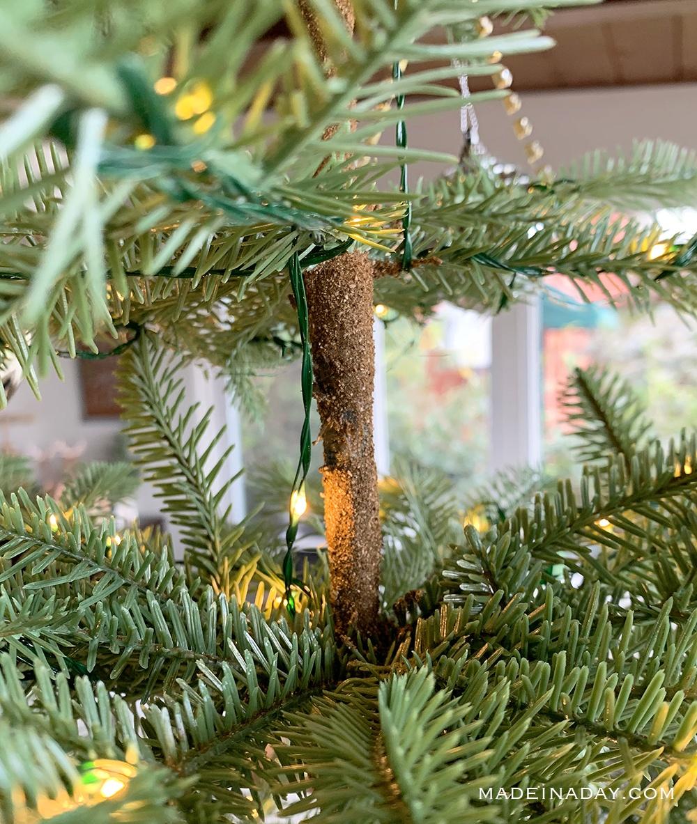 natural sparse tree trunk, Alpine balsam fir trunk