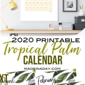 New Tropical Plant 2020 Printable Calendar 31