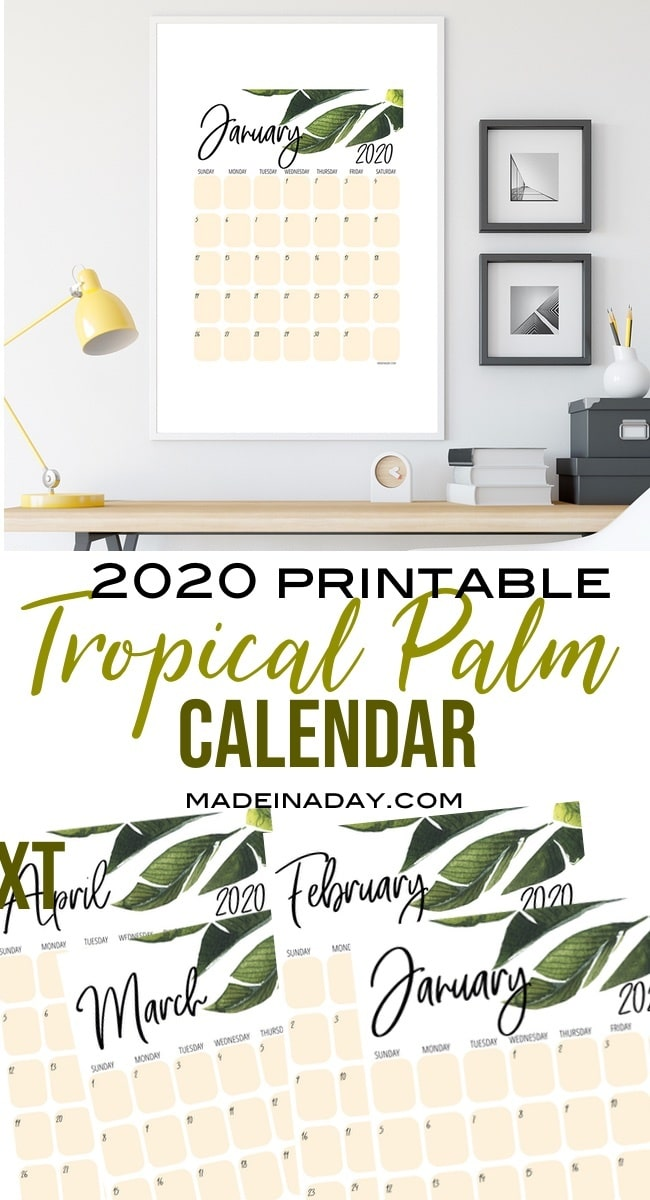 New Tropical Plant 2020 Printable Calendar 2