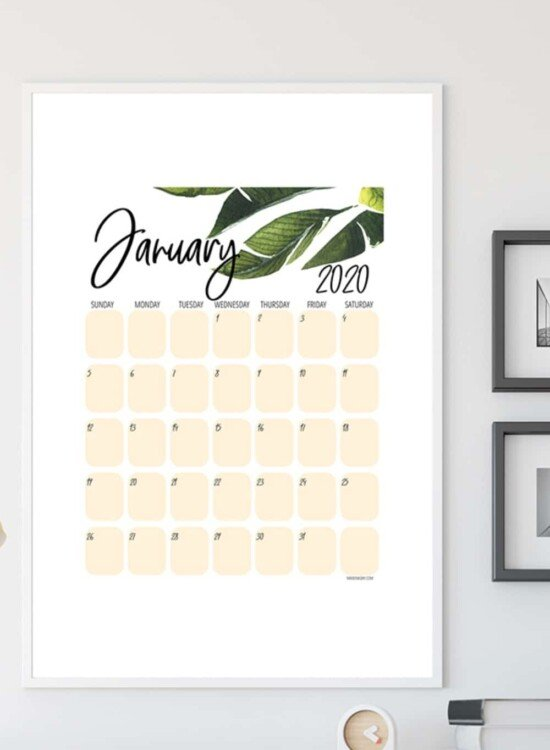 New Tropical Plant 2020 Printable Calendar 5