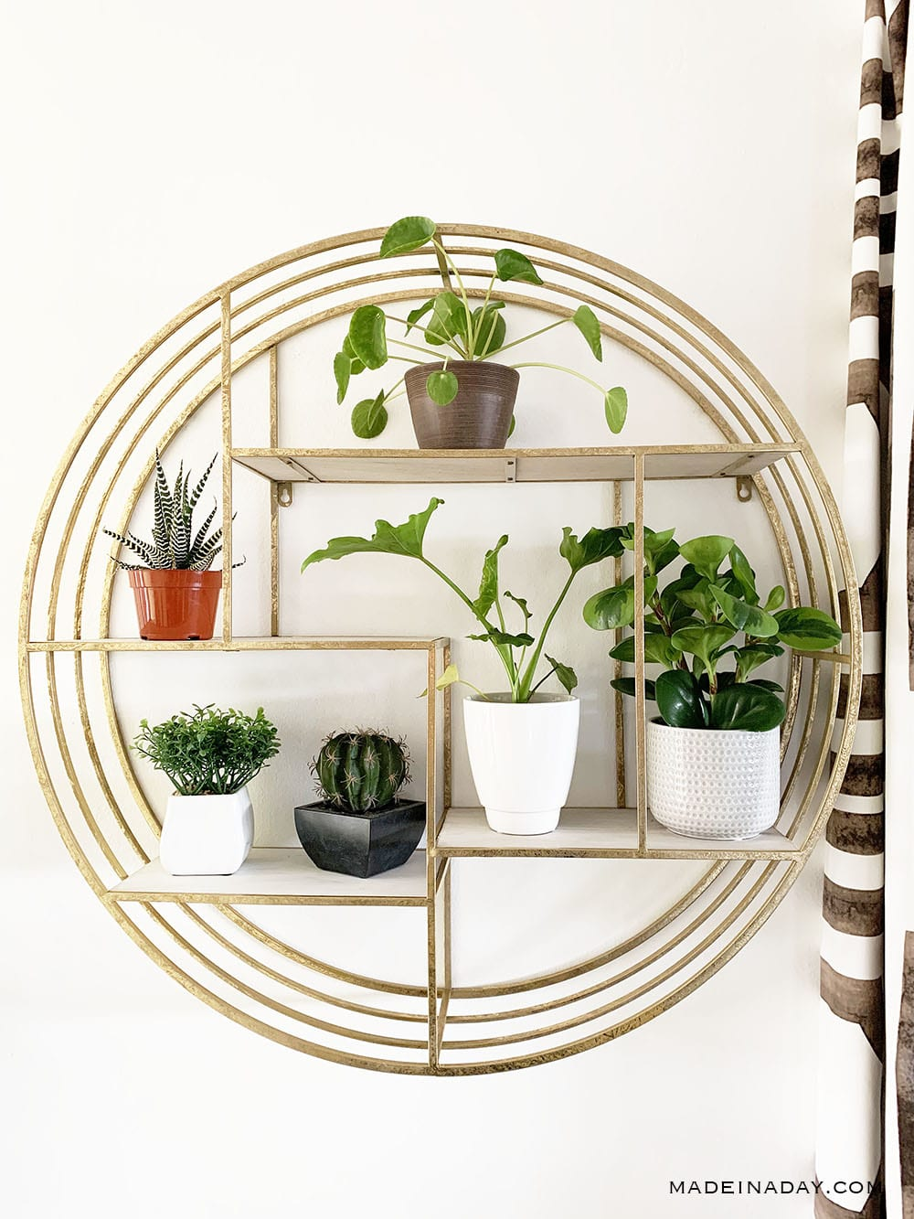 gold round wall shelf, round plant holder,