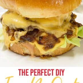 Perfect In-N-Out Burger Double Double Animal Style 1