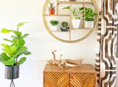 Modern Surf Shack Entryway with Plants