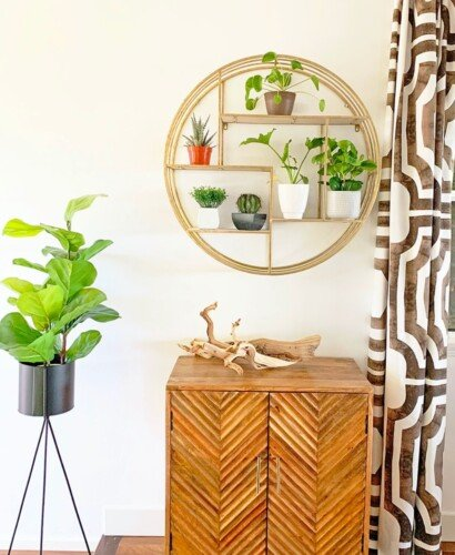 Modern Surf Shack Entryway with Plants 48
