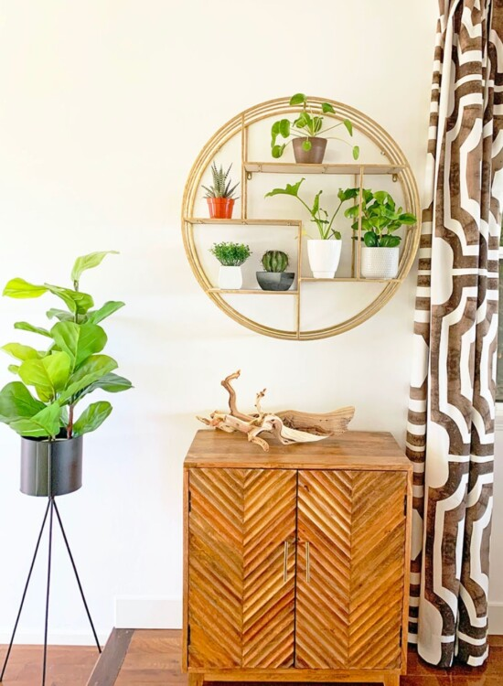 Modern Surf Shack Entryway with Plants 2