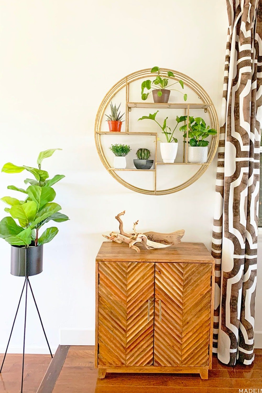 Modern Surf Shack Entryway with Plants 41