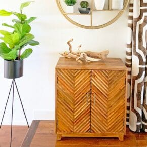 Modern Surf Shack Entryway with Plants 31