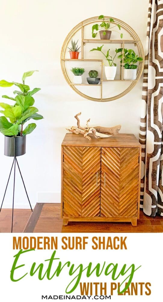 modern surf shack entryway inspiration with plants,